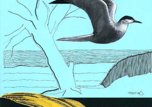 08 – Liberdade – María Sourgiadáki – Mini